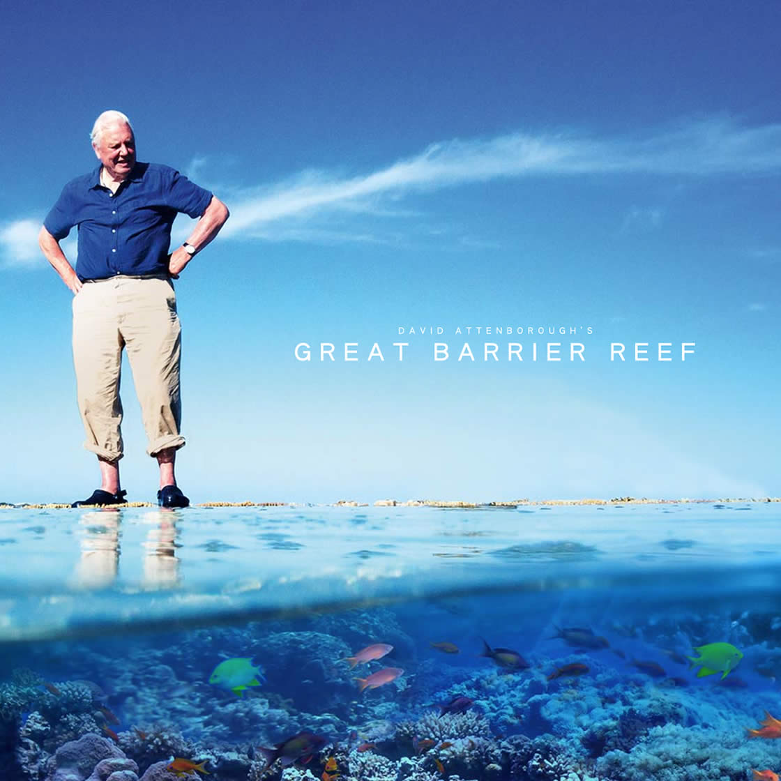 great barrier reef cover