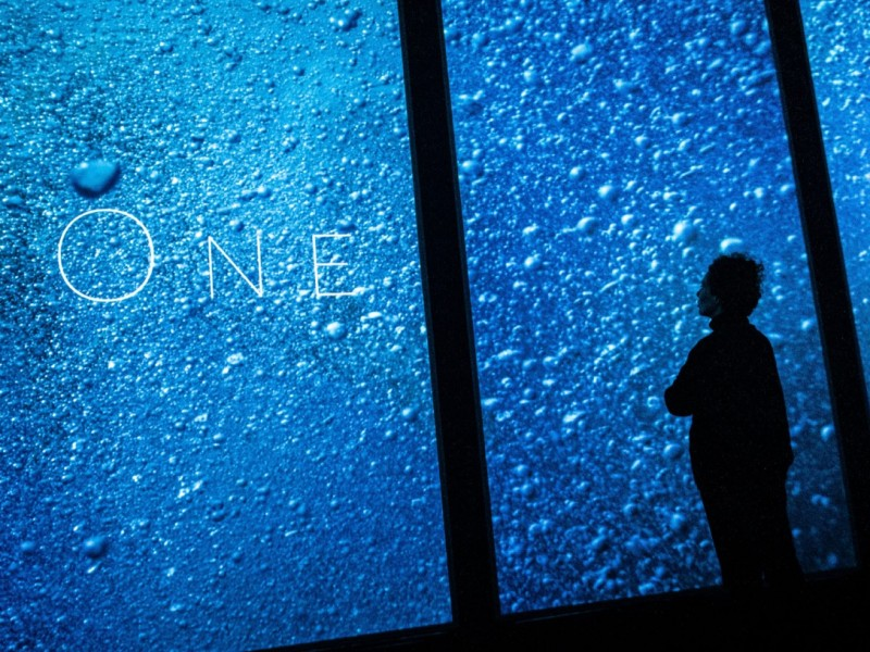 ONE – Lisbon Aquarium Installation